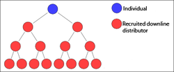 MLM binary tree structure. The blue individual (YOU) will receive compensation from the sales of the (YOUR) downline red members.